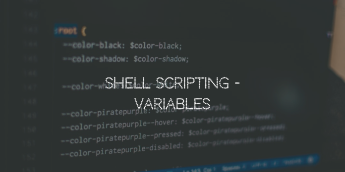 Shell Scripting Variables